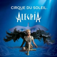 Purchase Cirque Du Soleil - Alegria
