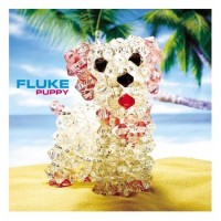 Purchase Fluke - Puppy