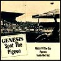 Purchase Genesis - Spot the Pigeon