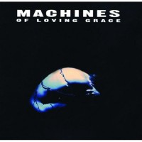 Purchase Machines of Loving Grace - Concentration