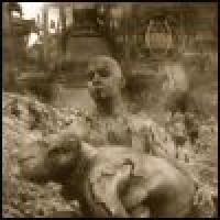Purchase Madder Mortem - Deadlands
