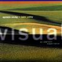 Purchase Oystein Sevag - Visual (with Lakki Patey)