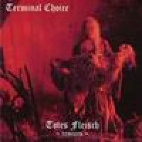 Purchase Terminal Choice - Totes Fleisch Remixes