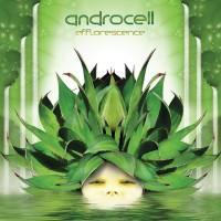 Purchase Androcell - Efflorescence