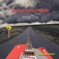 Buy Will Sumner - Endless Sumner Mp3 Download