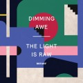 Buy Botany - Dimming Awe, The Light Is Raw Mp3 Download