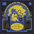 Buy King Gizzard & The Lizard Wizard - Flying Microtonal Banana Mp3 Download