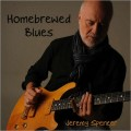 Buy Jeremy Spencer - Homebrewed Blues Mp3 Download