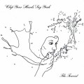 Buy Clap Your Hands Say Yeah - The Tourist Mp3 Download