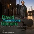 Buy David Gilmore - Transitions Mp3 Download