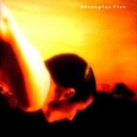 Purchase Porcupine Tree - On the Sunday of Life