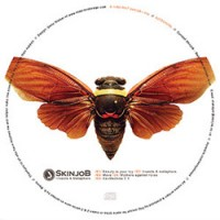Purchase SkinjoB - Insects & Metaphors