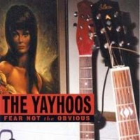 Purchase Dan Baird & The Yayhoos - Fear Not The Obvious