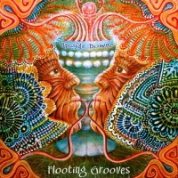Purchase Flooting Grooves - Upsyde Downe