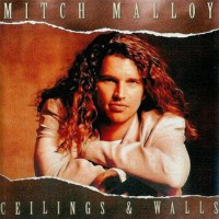 Purchase Mitch Malloy - Ceilings & walls