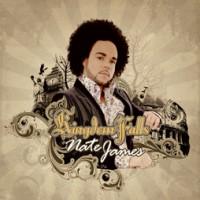 Purchase Nate James - Kingdom Falls