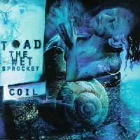 Purchase Toad the wet sprocket - Coil