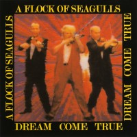 Purchase A Flock Of Seagulls - Dream Come True