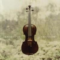 Purchase Saltillo - Ganglion