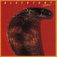 Purchase Blackfoot - Strikes