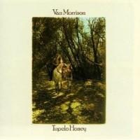 Purchase Van Morrison - Tupelo Honey (Vinyl)