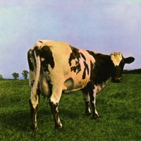 Purchase Pink Floyd - Atom Heart Mother
