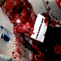 Purchase ScreamerClauz - Maggot Baby