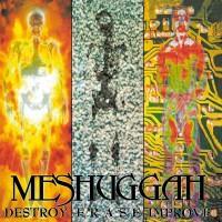 Purchase Meshuggah - Destroy Erase Improve