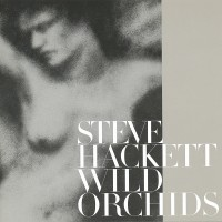 Purchase Steve Hackett - Wild Orchids