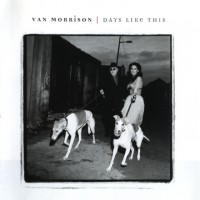 Purchase Van Morrison - Days Like This