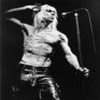 Purchase Iggy & The Stooges - The Stooges