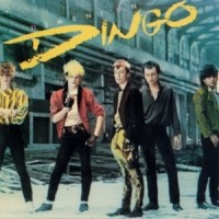 Purchase Dingo - Nimeni on Dingo