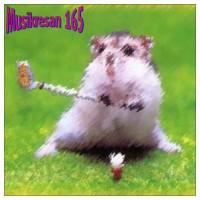Purchase VA - Musikresan 165