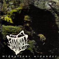 Purchase Finntroll - Midnattens Widunder