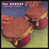 Purchase The Bongos - Drums Along the Hudson (Special Edition)