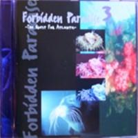 Purchase Tiesto - Forbidden Paradise 03