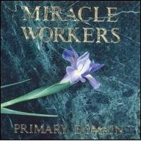 Purchase Miracle Workers - Primary Domain