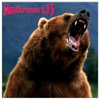 Purchase VA - Musikresan 175