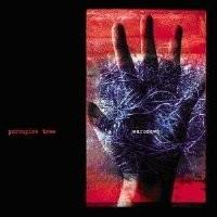 Purchase Porcupine Tree - Warszawa