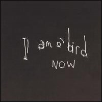 Purchase Antony And The Johnsons - I Am A Bird Now