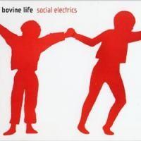 Purchase Bovine Life - Social Electrics
