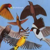 Purchase Brokeback - Looks At The Bird