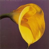 Purchase Swans - The Burning World