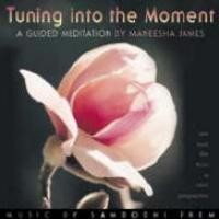 Purchase Maneesha - Tuning Into The Moment