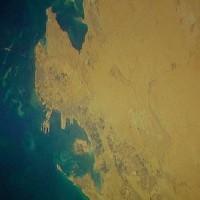 Purchase Muslimgauze - Gulf Between Us