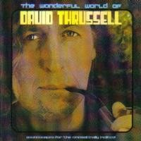 Purchase David Thrussell - The Wonderful World Of David Thrussell (Soundscapes For The Cinematically Inclined)