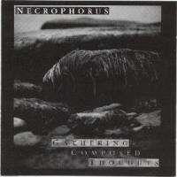 Purchase Necrophorus - Gathering Composed Thoughts