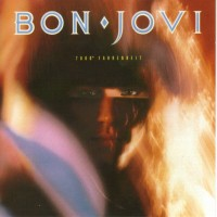 Purchase Bon Jovi - 7800 Degrees Fahrenheit