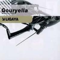 Purchase Gouryella - Ligaya (The Hardstyle Remixes) (Vinyl)