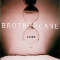 Purchase Brother Cane - Seeds